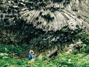 عنوان: پارک ملی Mount Rainier، واشنگتن کوهنوردی در حال مشاهده ستون عظیمی از گدازه ی سرد شده را نشان می دهد. کوه Rainier در طول زندگی جوان خود بارها فوران کرده است. عکاس: Tianjia Zhang