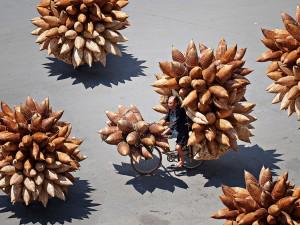 عنوان: Hung Yen، ویتنام یک ماهیگیر در حال جابجا کردن سبد ماهی توسط دوچرخه است. عکاس: Huynh Jet