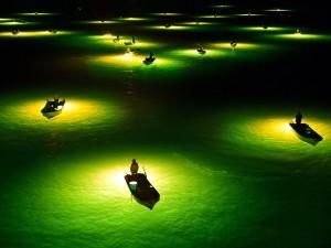 عنوان: مرد ماهیگیر در شب، ژاپن ای مرد ماهیگیر در حال شکار نوعی مارماهی به نام مارماهی شیشه ای در رودخانه Yoshino می باشد. بهترین زمان برای شکار این نوع ماهی شب است. عکاس: Asahi Shimbun
