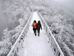 عنوان: کوه Tianmen، چین عکاس: Reuters