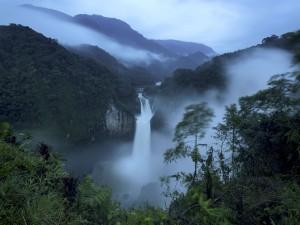 عنوان: آبشارهای سان رافائل، اکوادور رودخانه کوکا در سان رافائل بزرگترین آبشار اکوادور را به وجودآورده است. عکاس: Ivan Kashinsky