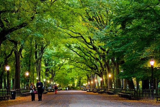 عکس های بسیار زیبا از سنترال پارک نیویورک