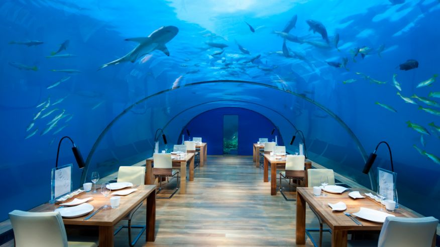 Amazing underwater restaurants1