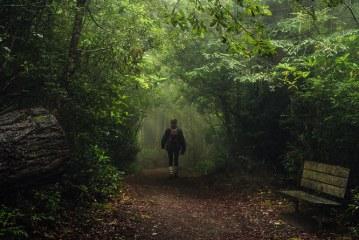 ۸عکس محلی از طبیعت ایالت اورگان آمریکا