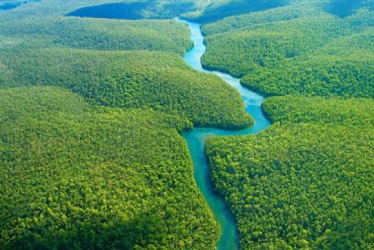 جنگل آمازون یکی از عجایب هفتگانه جهان