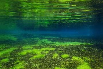 دریاچه ای که زلال ترین آب جهان را دارد!