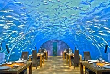 مجلل ترین رستوران های زیر آب