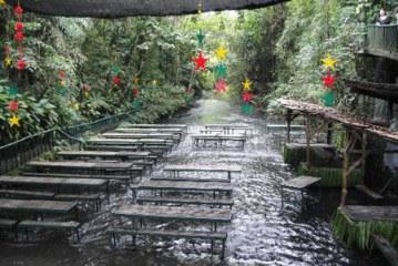 رستورانی وسط رودخانه در فیلیپین