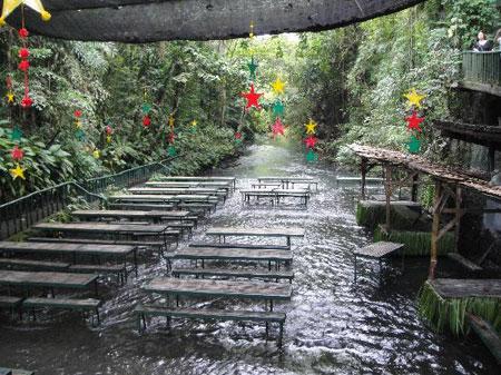 رستوران آبشار ویلا اسکودرو در فیلیپین