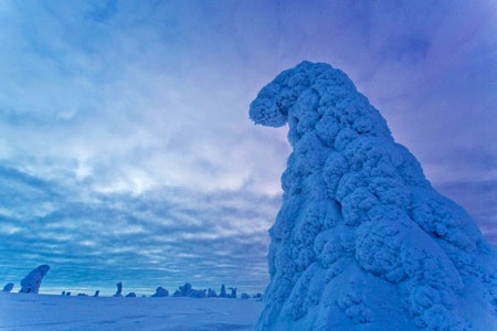 چهره خاص پارک ملی ریسیتونتوری فنلاند در زمستان
