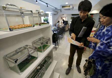 کافی شاپ مارها در توکیو