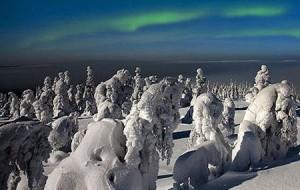 جنگل یخ زده در فنلاند معروف به زادگاه بابانوئل
