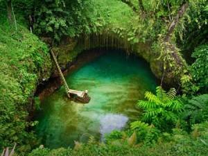 لذت شنا در استخری در دل طبیعت