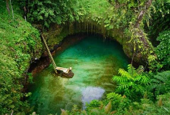 شنا کردن در گودالی عظیم در دل جنگل های نیوزیلند