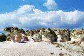 بزرگترین قارچ سنگی که در دنیا وجود دارد!