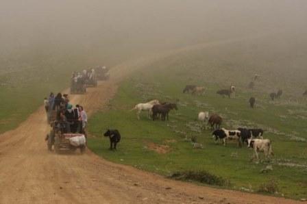 طبیعت بی نظیر جواهردشت در استان گیلان + عکس