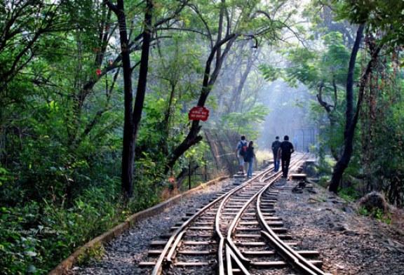 سفری کوتاه به بمبئی، شهری به بزرگی بالیوود