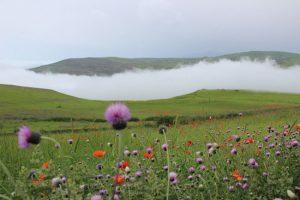 روستایی بکر و دست نخورده به نام سوباتان در گیلان