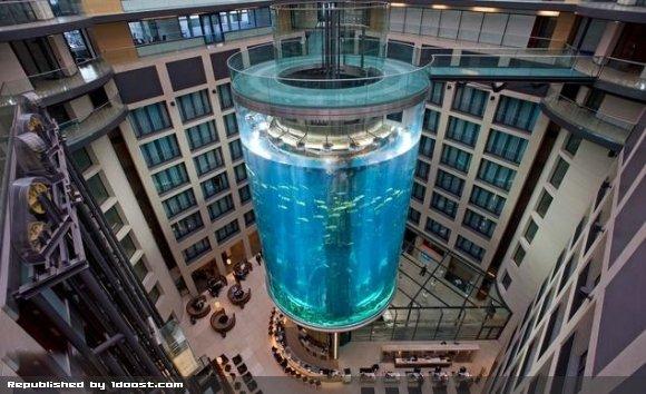 آسانسور یا آکواریوم؟! مسئله این است...