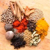 طرز تهیه چیکن تیکا ماسالا،غذای محلی هند