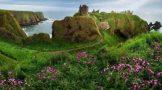 ببینید: 11 قصر شگفت انگیز در دنیا