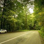جاده اسالم به خلخال؛ رویاییترین و جذابترین جاده جنگلی ایران
