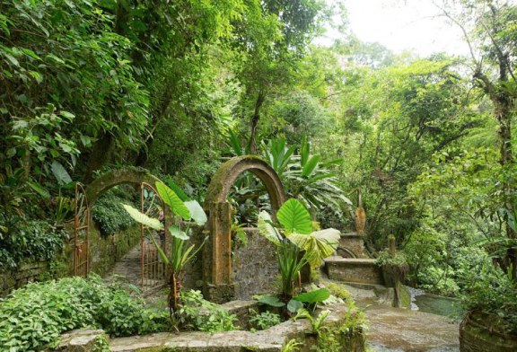 باغ های زیبای دنیا؛ مقاصدی مناسب برای سفر در فصل زمستان