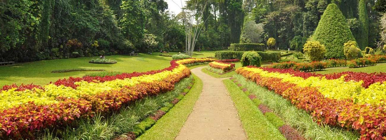 باغ ملی تیس