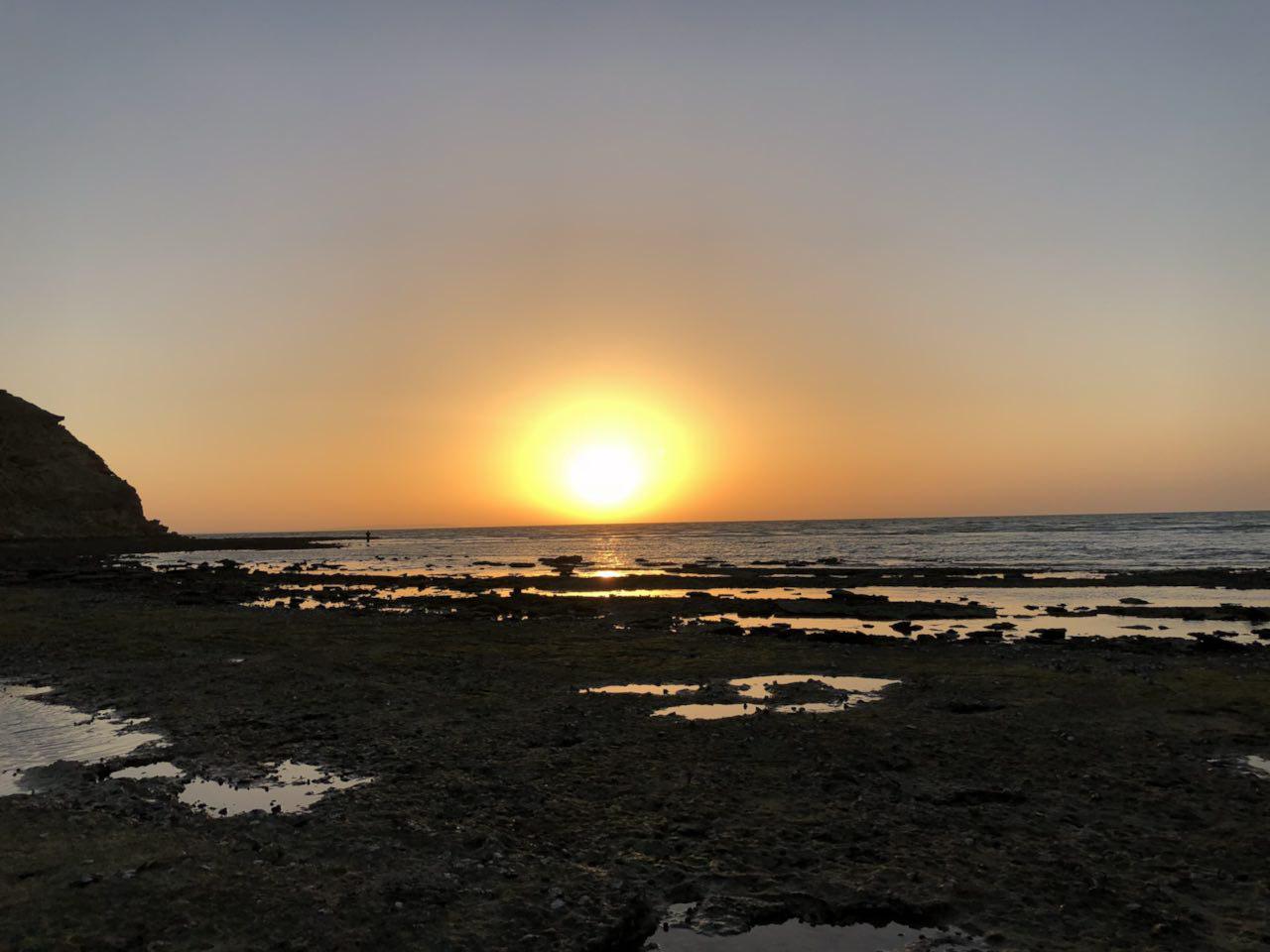 سواحل مرجانی تیس