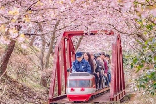 باورهای نادرست در مورد کشور ژاپن، سرزمین آفتاب تابان
