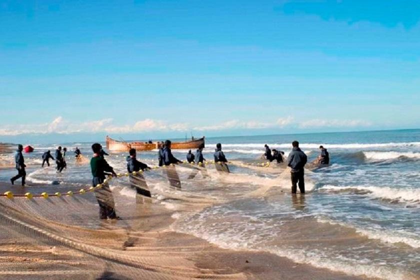 ماهیگیری در ساحل انزلی