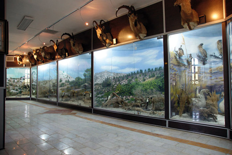 موزه ژئوپارک قشم