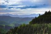 پارک جنگلی دیلیجان ارمنستان