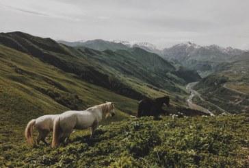 تصاویر زیبا از طبیعت بکر گرجستان