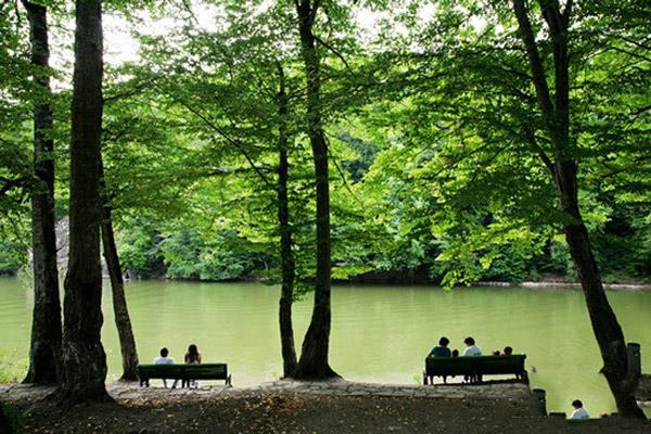 پارک جنگلی دلیجان