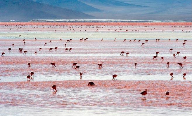 دریاچه خونین