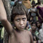 تصاویر برتر مسابقات عکاسی سیه نا ۲۰۱۸