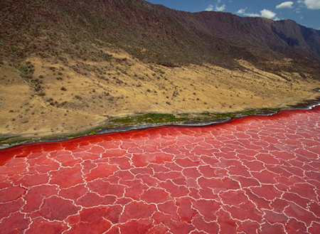 دریاچه-ناترون-در-تانزانیا