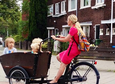 دوچرخه باری وسایل نقلیه بومی