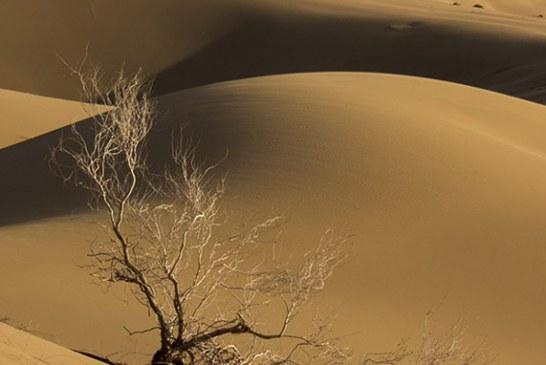 پوشش شبکه تلفن همراه در مرنجاب