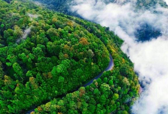 جاده اسالم به خلخال ؛ رویایی ترین جاده جنگلی ایران