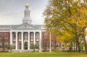 بهترین دانشگاه های جهان کدامند؟