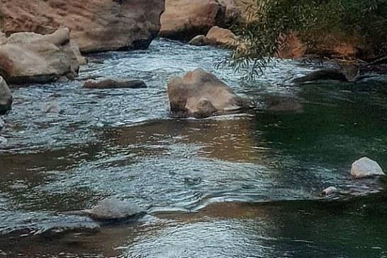 ۱۵ روز جستجو برای کشف گردشگر غرق شده در رودخانه ماربره دورود | جسد گردشگر پیدا شد