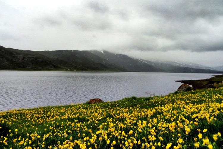 دریاچه نئو
