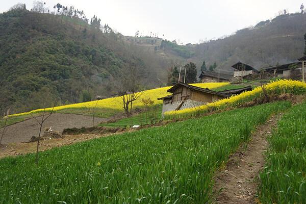 زرگر، روستایی با اهالی اروپایی