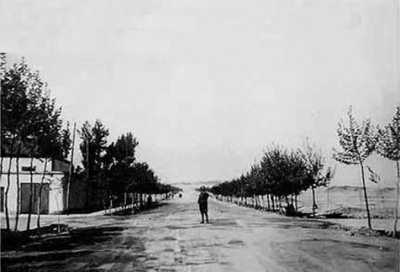 خیابان ولیعصر ؛ باشکوهترین و طولانی ترین خیابان خاورمیانه
