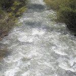 هشدار آب منطقهای به گردشگران | نزدیک شدن به رودخانههای کرج و طالقان خطرناک است