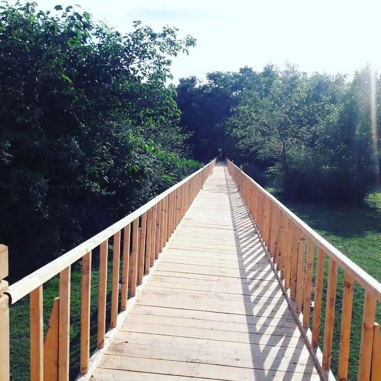 پل چوبی تالاب تالش - پل چوبی تالاب جوکندان - پل چوبی تالاب تالش - پل چوبی جوکندان