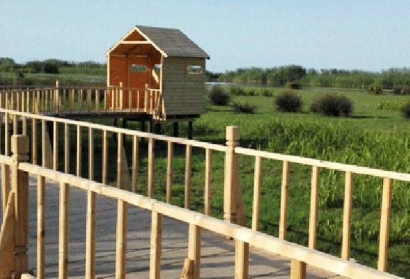 پل چوبی تالاب تالش آماده بهرهبرداری شد ؛ پرندهنگرها منتظر باشند | ۲۹۰ متر به دل طبیعت و تالاب بزنید