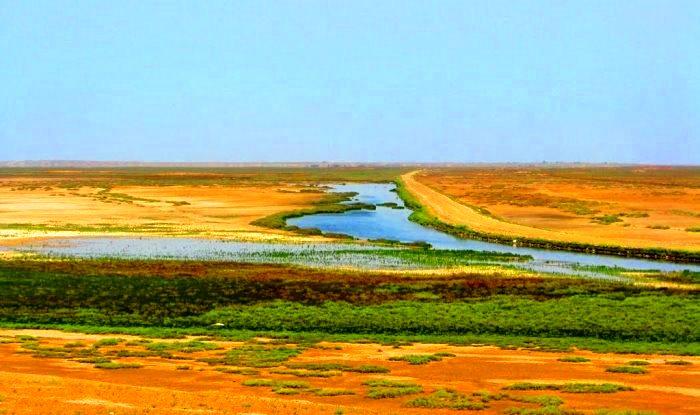 منطقه شکار ممنوع صوفیکم